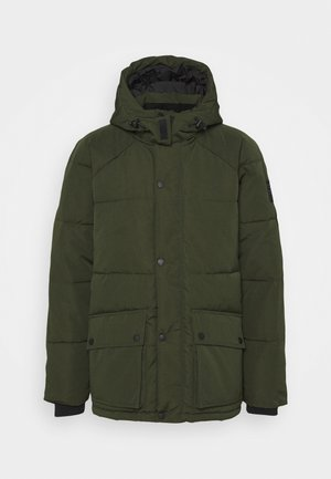 KENNETH - Winter jacket - forest green
