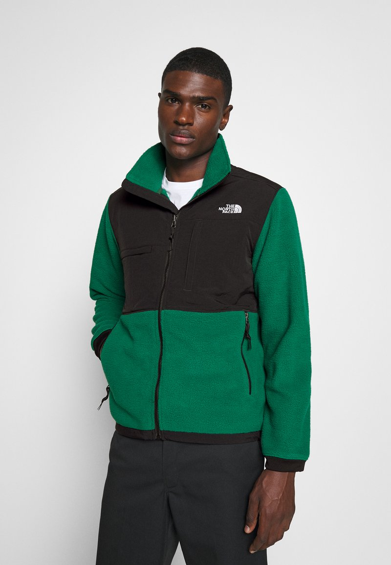 The North Face - DENALI 2 - Fleecejakker - evergreen