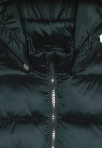 Kids ONLY - KONNAIOMI HOODED JACKET - Winter jacket - ponderosa pine - 5