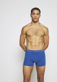 Calvin Klein Underwear - TRUNK 3 PACK - Pants - minnow/horoscope/inferno - 3