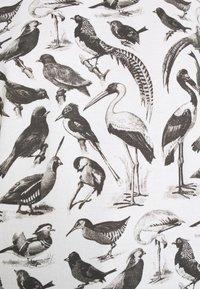 Dedicated - VISBY BIRDS - Triko spotiskem - whisper white - 5