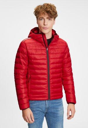 Light jacket - carmin