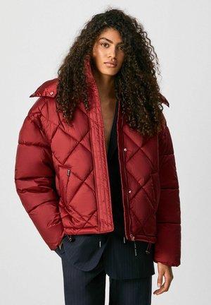 CLAUDE - Winter jacket - johannisbeere