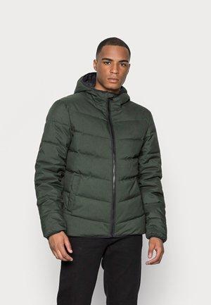 TITAN - Winter jacket - deep forest melange