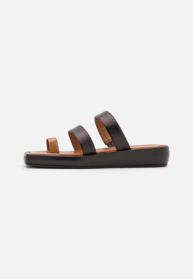LARISSA  - Infradito - black/brown