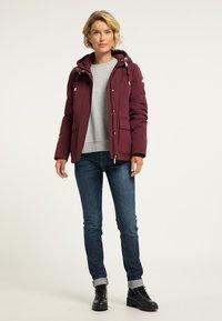 ICEBOUND - Winter jacket - bordeaux - 1
