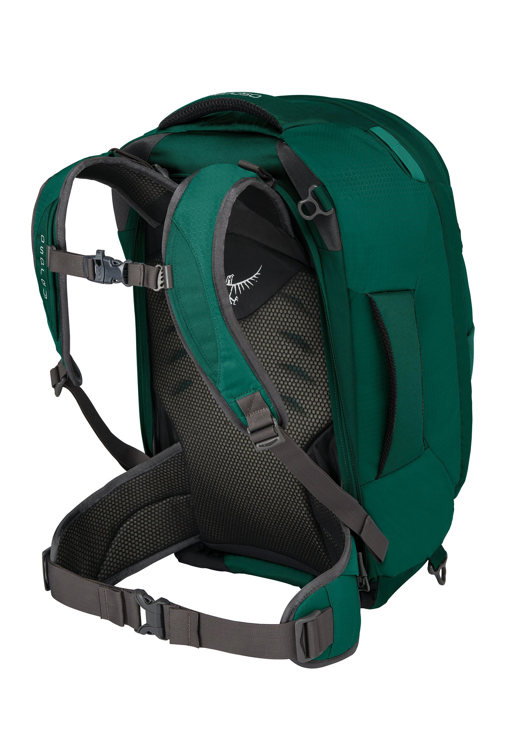 Quality Outlet Osprey Rucksack - rainforest green | women's accessories 2020 cIRrL