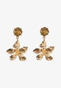 HALLHUBER - Earrings - gold - 1