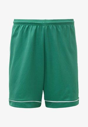 SQUADRA 17 SHORTS - Sports shorts - green