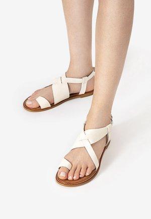 ZEHENSTEG - T-bar sandals - mntrl bone nbn