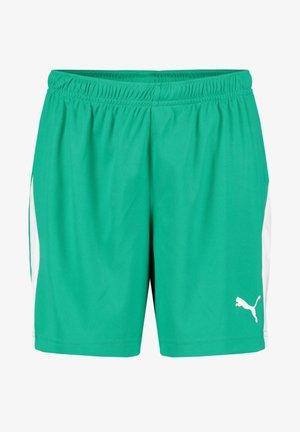 LIGA  - Sports shorts - grün