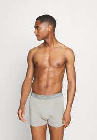Calvin Klein Underwear - TRUNK 3 PACK - Pants - multicolor - 2