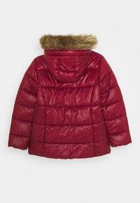 Levi's® - PUFFER - Winter jacket - cabernet - 1