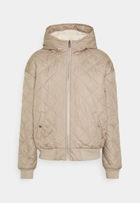 Hollister Co. - REVERSIBLE - Winter jacket - grey - 0