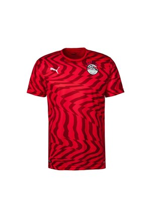 EGYPT MEN'S HOME REPLICA  - Printtipaita - red