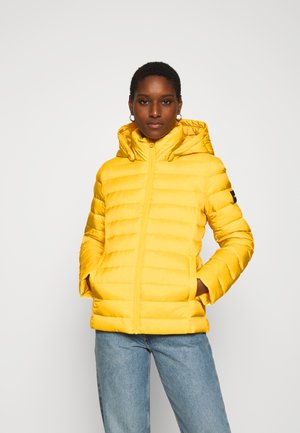 COATED ZIP LIGHT JACKET - Bunda z prachového peří - yellow dahlia