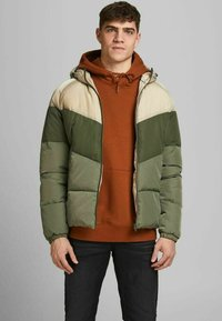 Jack & Jones - Winter jacket - chinchilla - 0