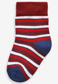 Next - 5 PACK DOG - Ponožky - blue - 1