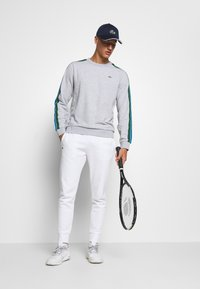 Lacoste Sport - RAINBOW TAPING - Bluza - silver chine/navy blue/utramarine/green/white - 1