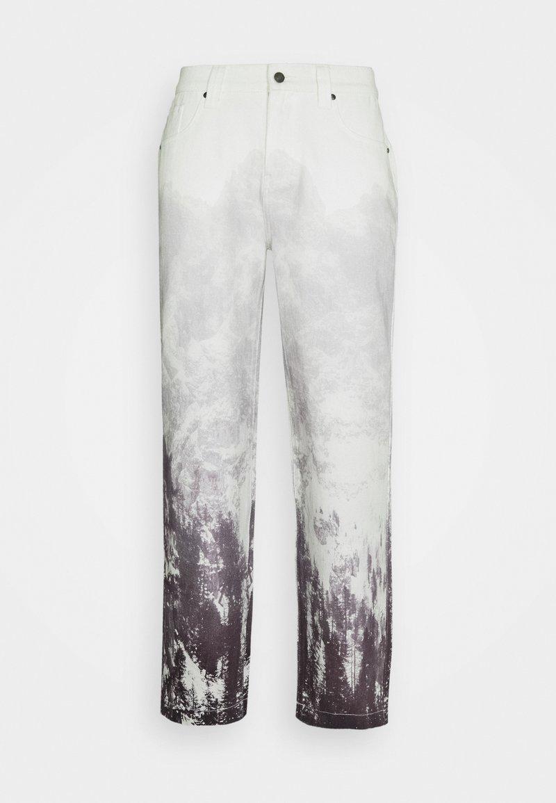 Jaded London - MOUNTAIN SCENE SKATE  - Jeans baggy - grey