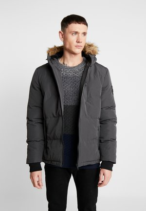 TRAILBLAZER - Winter jacket - grey
