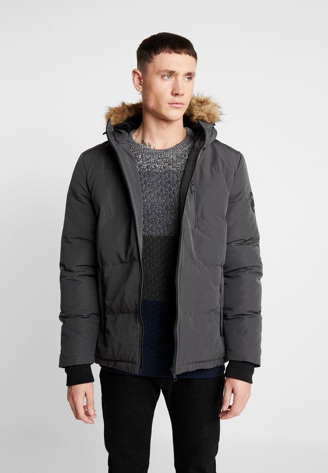 TRAILBLAZER - Winter jacket - grey