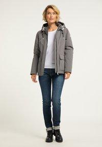 ICEBOUND - Winter jacket - grau - 1