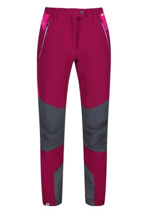 MOUNTAIN - Outdoor trousers - beetrt/duchs