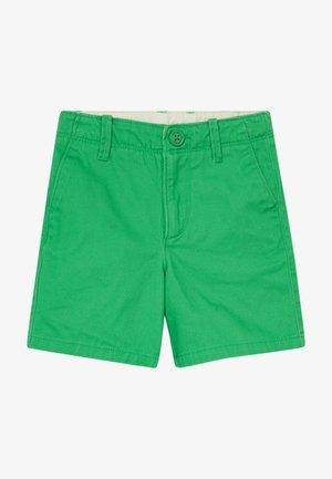 TODDLER BOY - Shorts - lush green