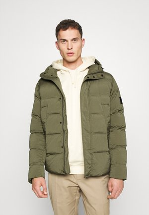 HOODED STRETCH - Talvitakki - green