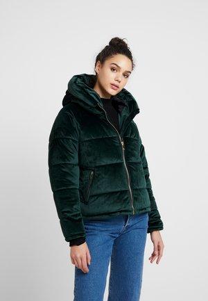 ONLNEW PAULA - Winter jacket - green gables