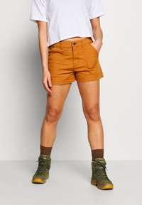 Patagonia - STAND UP - Urheilushortsit - umber brown - 0