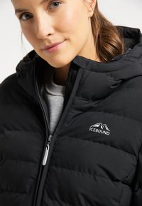 ICEBOUND - Winter jacket - schwarz - 3