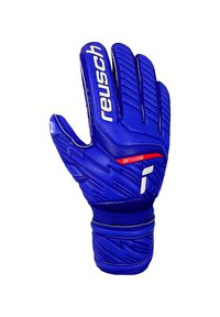 Reusch - Goalkeeping gloves - blau - 1