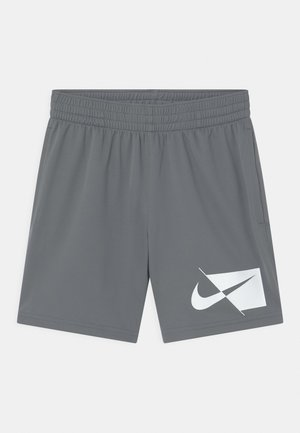 PLUS - Sports shorts - smoke grey/white