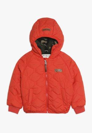 STUART BABY - Winter jacket - fiesta