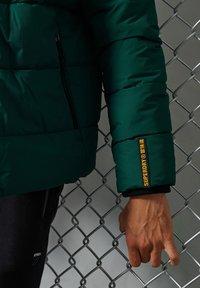 Superdry - Down jacket - pine/black - 2