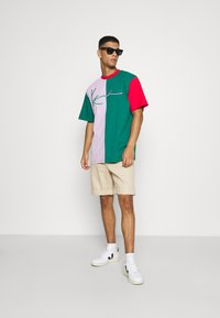 Karl Kani - SIGNATURE BLOCK TEE UNISEX - Print T-shirt - green - 1