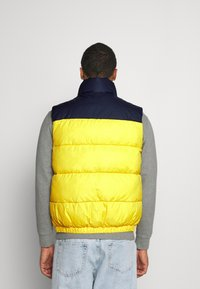 Tommy Jeans - CORP VEST - Waistcoat - valley yellow - 2