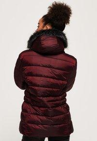 Superdry - TAIKO  - Winter jacket - purple - 2