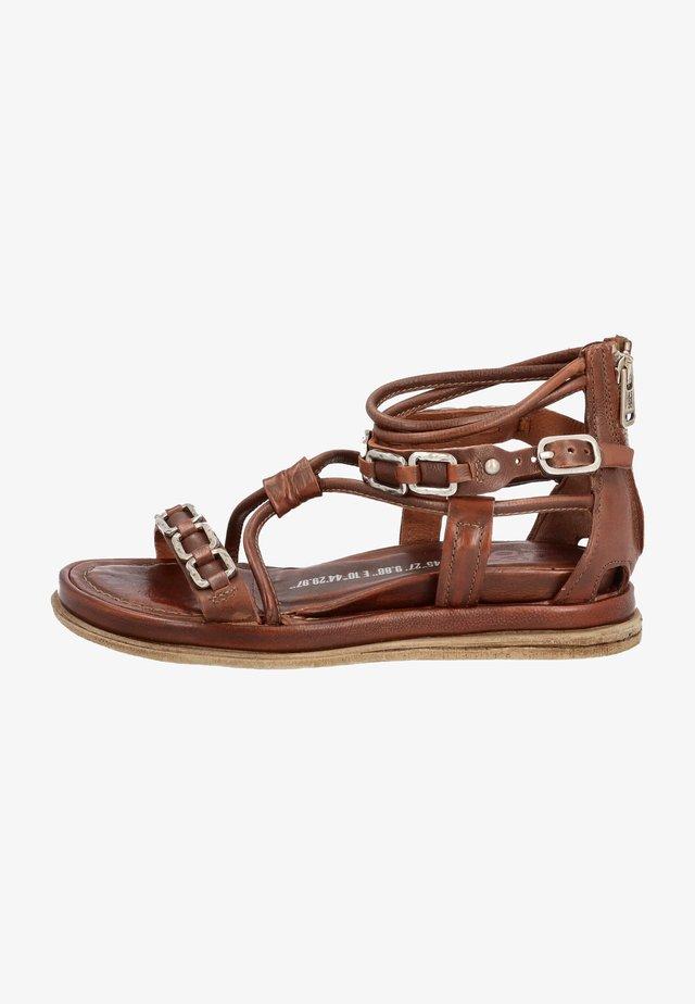 Ankle strap ballet pumps - calvados