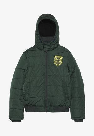 Winter jacket - night green