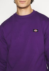Dickies - NEW JERSEY - Felpa - deep purple - 5