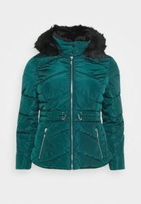 CAPSULE by Simply Be - LUXE HOODED SHORT PADDED COAT - Talvitakki - forest green - 4