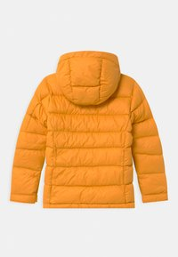 Peak Performance - FROST UNISEX - Down jacket - blazetundra - 1