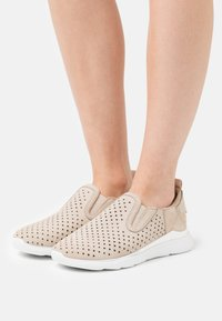 Geox - HIVER  - Trainers - light taupe - 0