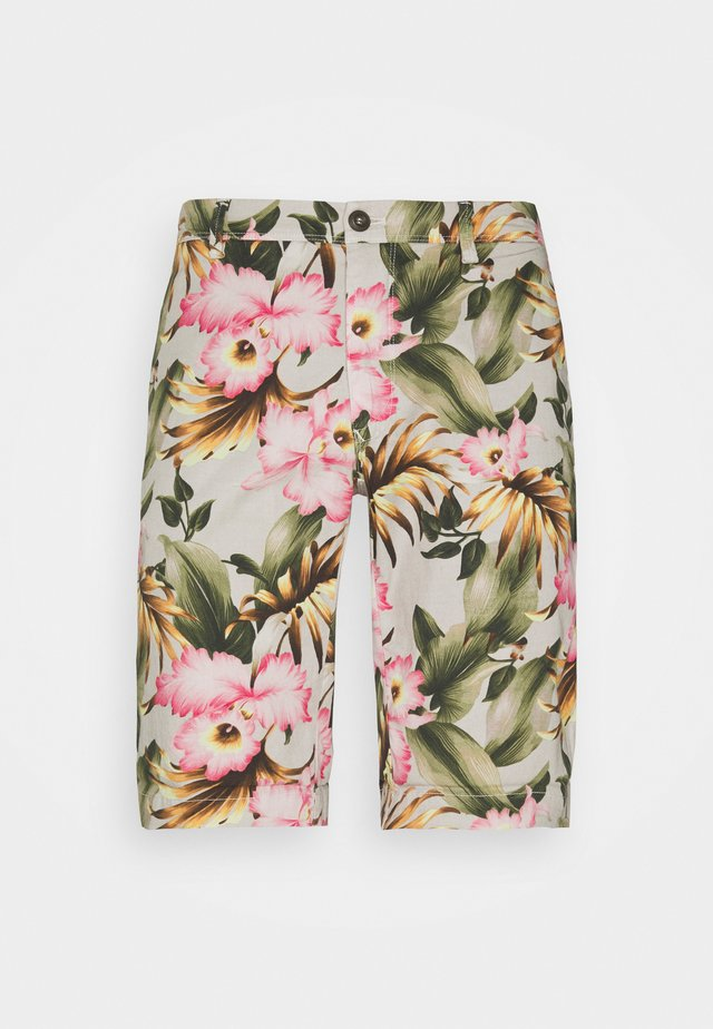 EISENHOWER - Shorts - grey