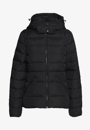 CLASSIC JACKET - Down jacket - black