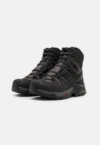 Salomon - QUEST 4 GTX - Hiking shoes - magnet/black/quarry - 1