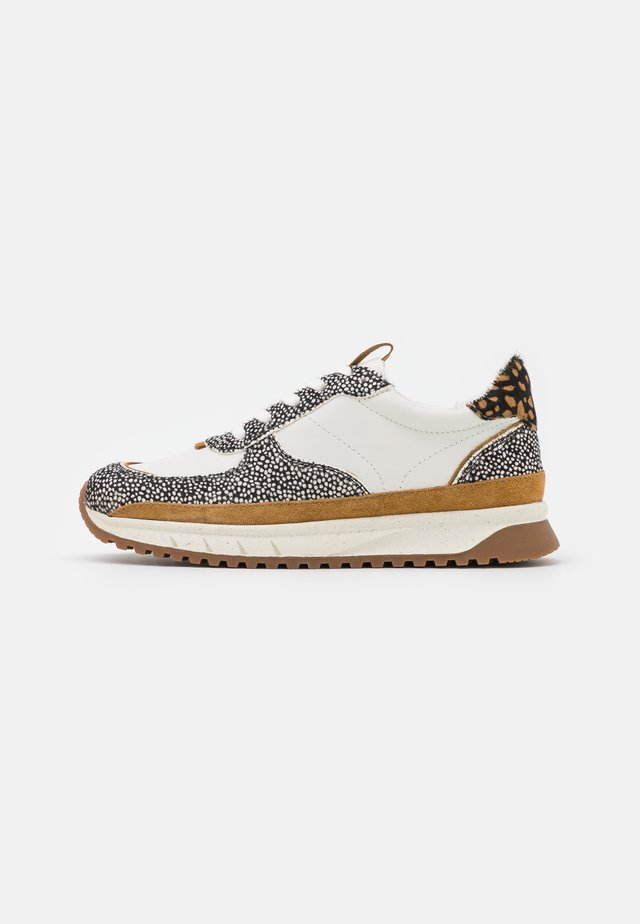 TRAINER SPOT DOT - Sneakers laag - olive grove/multicolor